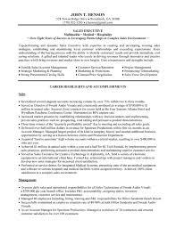 sales resume sample executive sales  seangarrette coexecutive sales resume samples salesexecutiveresume executive sales resume samples sales executive  image    s resume sample