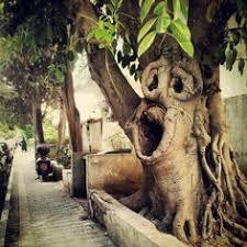 Израиль: лучшие изображения (132) | Израиль, Святая земля и ...
