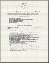 information technology resume  occupational examples samples free    information technology resume information