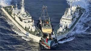Image result for tàu trung quốc cướp tàu cá việt nam