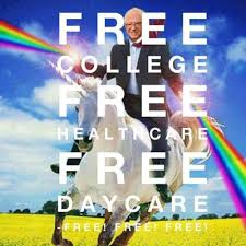 Image result for not feeling  the bern