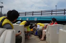 「徳島ひょうたん島観光」の画像検索結果