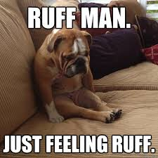 Ruff man. Just feeling ruff. - depressed dog - quickmeme via Relatably.com