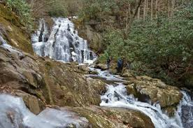 Hike The Smokys (Sevierville, TN): Top Tips Before You Go ...