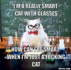 resized_chemistry-cat-meme-generator-i-m-a-really-smart-cat-with ... via Relatably.com