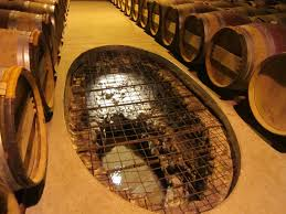 m fascinating design ideas of underground wine cellar with brown wine barrels also concrete floor as well as wine chillers also spiral wine cellars barrel wine cellar designs
