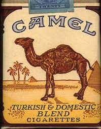Image result for camel smoking images