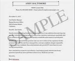 Resume Cover Letter Examples Procurement   Thinkingresume com Break Up