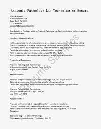 sample investigator resume  tomorrowworld cosample investigator resume