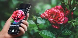 Приложения в Google Play – <b>Plant</b> Lens - <b>Plant &</b> Flower Identification