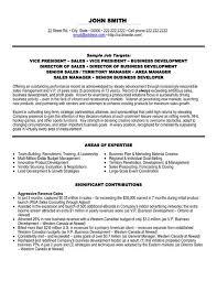 Examples Of Vp Resume     BRAO