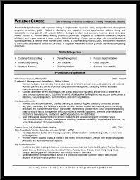 resume summary skills examples create professional resumes resume summary skills examples resume qualifications examples resume summary of training resume example training resume skills