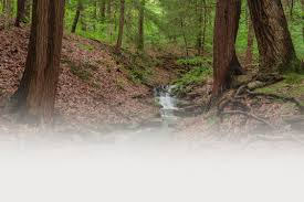 for parks wrap up westmoreland county pa official website parksrec background
