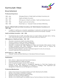 cv making nz professional curriculum vitae samples sawyoo com