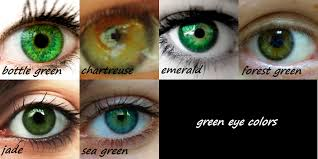 IMAGE | brown eyes color chart via Relatably.com