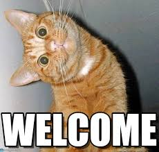 Welcome - Cat Tilting Head meme on Memegen via Relatably.com