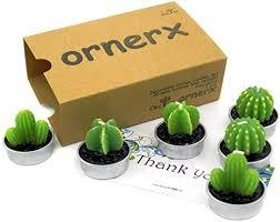 Ornerx Decorative Cactus Tea Light Candles 6 Pcs ... - Amazon.com