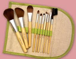 eco friendly makeup brush set only 13 99