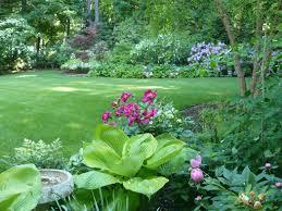 Image result for lush landscape