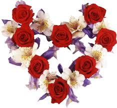 Image result for Love, roses,hearts