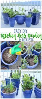 Kitchen Windowsill Herb Garden 1000 Ideas About Kitchen Herb Gardens On Pinterest Patio