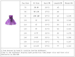 Princess Flower Girl <b>Dress Summer</b> Tutu Wedding <b>Birthday Party</b> ...