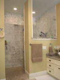 basement bathroom ideas walk shower bathroom ideas s shower only for astonishing small plans and bathrooms
