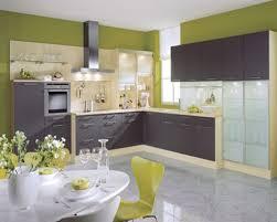 Kitchen Design Colors Kitchen Subtle White Kitchen Color Idea For Small Apartment