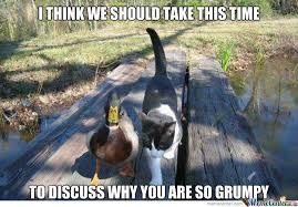 Actual Advice Mallard Memes. Best Collection of Funny Actual ... via Relatably.com
