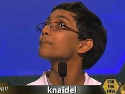 Arvind Wins Spelling Bee, Winning Word Is 'Knaidel' [Video ... via Relatably.com