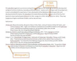 citation essayin paper citations research paper   citations
