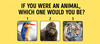 test if you were an animal which one would you be playbuzz