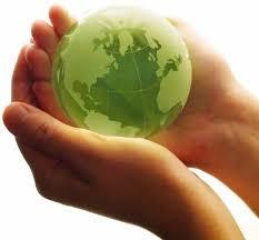 Image result for environmental program