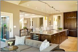 Best Open Floor Plan Home Designs Photo Of nifty Modern Tiny House    Best Open Floor Plan Home Designs With fine Paint Colors For Open Floor Plan House Nice