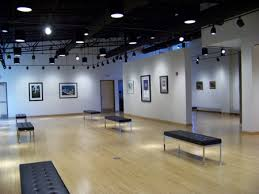 the new pauly friedman art gallery at misericordia university is holding its grand opening exhibit guiding light featuring a stellar exhibition of large art gallery track lighting