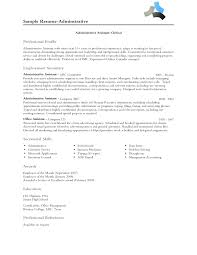 professional summary examples for resume resume badak professional profile resume examples
