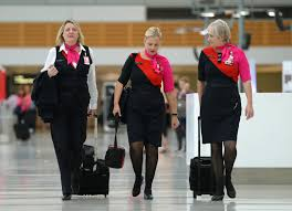 how flight attendants work howstuffworks