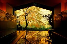 Explore the Stunning Beauty of Japan's <b>Autumn</b> Colors at a <b>Hot</b> ...