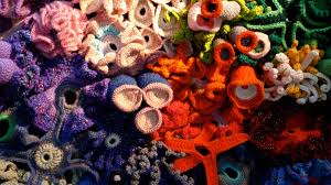 math ted com gallery what happens when you mix math coral and crochet it s mind blowing
