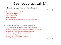 Affordable Price   A level beetroot coursework