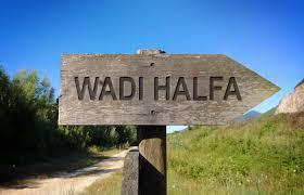 Image result for وادي حلفا