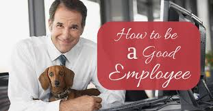 how to be a good employee at work  employee qualities  wisestep how to be a good employee