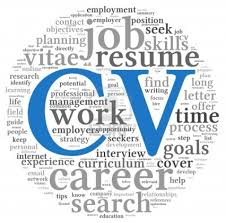 create the perfect cv
