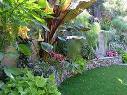 Small Picture 106 best Tropical gardens images on Pinterest Tropical plants
