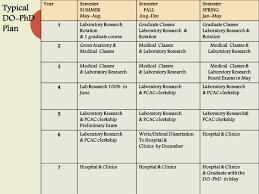 Write my dissertation proposal timetable    dissertation proposal     What is a dissertation    Guide to undergraduate dissertations
