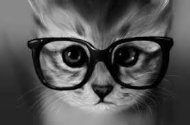 """Résultat de recherche d'images pour """"photo de chat trop mignon noir"""""""
