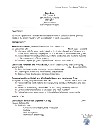 how should a job resume look like make resume how a resume should look student template