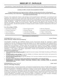 supply chain executive resume format cipanewsletter cover letter supply chain resumes supply chain resumes 2013
