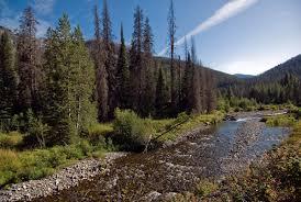 photo essay yellowstone national park save