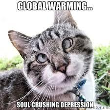 Global Warming... Soul Crushing Depression - Cross Eyed Cat | Meme ... via Relatably.com